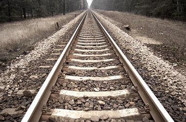 В Донецкой области под колесами поезда погибла женщина, которая собирала уголь