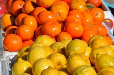 В магазины России вернулись мандарины и лимоны из Турции