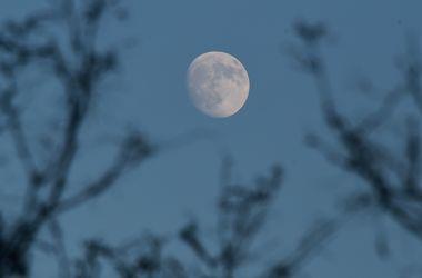 Ученые выяснили, как появилась Луна