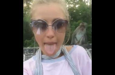 Обезьяна содрала с девушки очки из-за кривляний в камеру