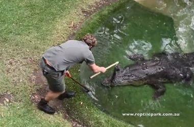 Австралиец сделал предложение своей девушке в загоне с крокодилом