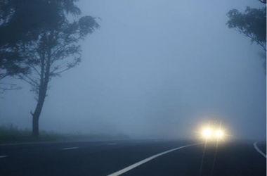 Туманное ДТП: 29 машин, трое погибших, 41 раненый
