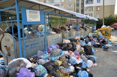Пока ищут землю, Львову некуда вывозить мусор. Фото: 112.ua