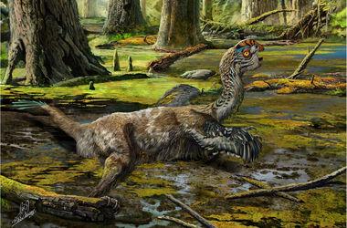 Останки нового вида динозавров обнаружили в Китае