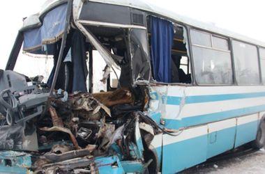 Подробности ужасного ДТП под Житомиром: 17 человек доставили в больницу