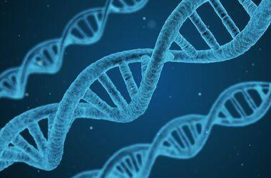 Ученые назвали продукты, которые продлевают жизнь человека на 20 лет