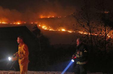 В Израиле по подозрению в поджогах лесов арестованы 12 человек