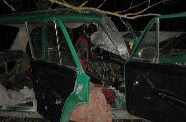 Смертельное ДТП в Житомирской области: 4 человека погибли на месте