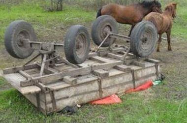 Во Львовской области в результате падения с телеги погиб мужчина