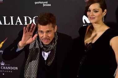 Питт винит Джоли в провале его фильма с Котийяр - Звездные новости - Питт жалуется, что Джоли развернула против него настоящую кампанию, призванную дискредитировать его в глазах поклонников