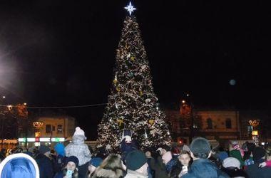 В Ровно засветилась первая в Украине новогодняя елка