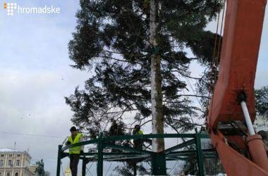 На Софийской площади в Киеве начали устанавливать главную елку страны