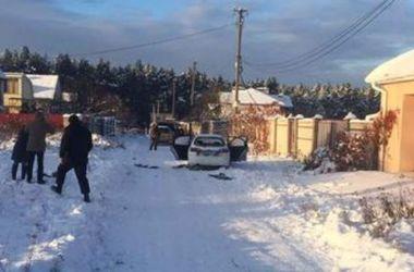 Экс-глава киевской милиции раскритиковал операцию в Княжичах