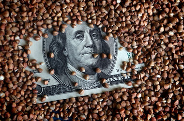 В Украине вырастет курс доллара: прогноз аналитика