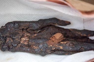 США вернули Египту похищенную руку мумии