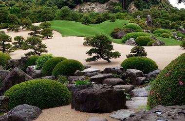 Что принесет год Японии в Украине: садовые реминисценции, просмотры японских фильмов и курсы по игре в го и каллиграфии