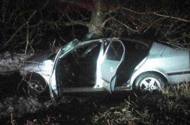 Смертельное ДТП в Днепропетровской области: водитель погиб мгновенно