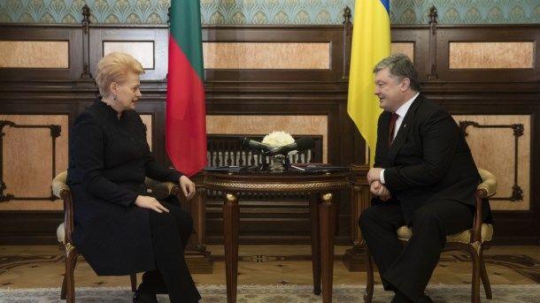 Грибаускайте: Литва пробует посодействовать Украине вполучении безвиза сЕС