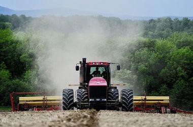 Фермер засеял взлетно-посадочную полосу военного аэродрома в Черниговской области