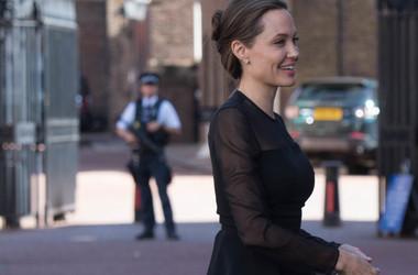 Анджелина Джоли не ожидала от Брэда Питта отверженной борьбы за детей