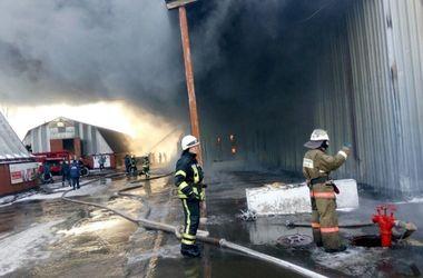 Масштабный пожар под Киевом: столб черного дыма поднялся в небо