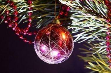 Торжественное зажжение новогодних елок в Киеве начнется в понедельник