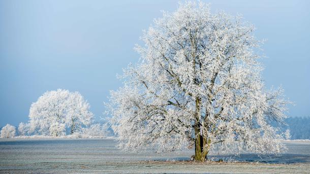Всреду иУкраине мокрый снег исильный ветер