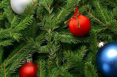 Как безопасно установить новогоднюю елку