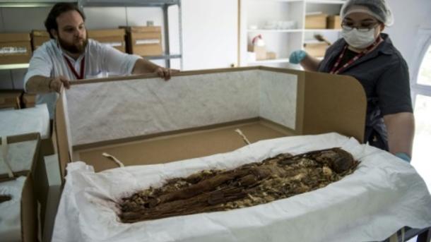 Генетики изЧили изучили древнейшие мумии наЗемле