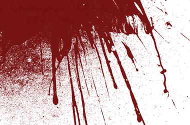 Мужчина зверски убил трех человек в Днепропетровской области