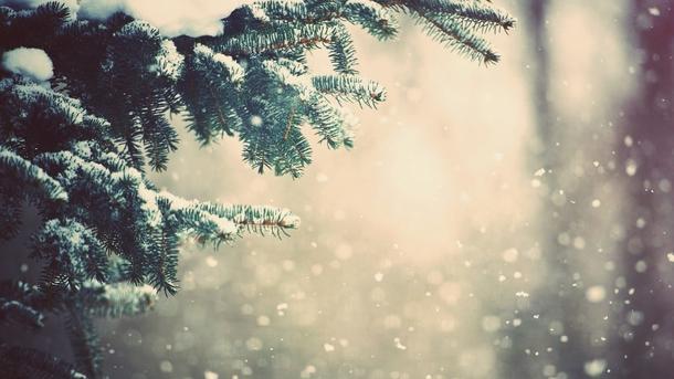 ВЗапорожье предполагается сильный мороз иснегопад