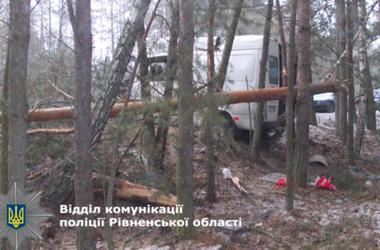 В Ровенской области водитель погиб, влетев в дерево