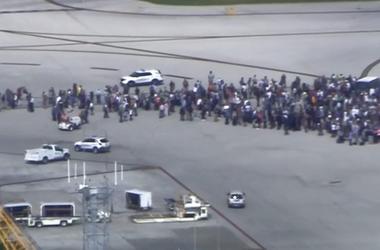 В аэропорту Флориды произошла стрельба - СМИ