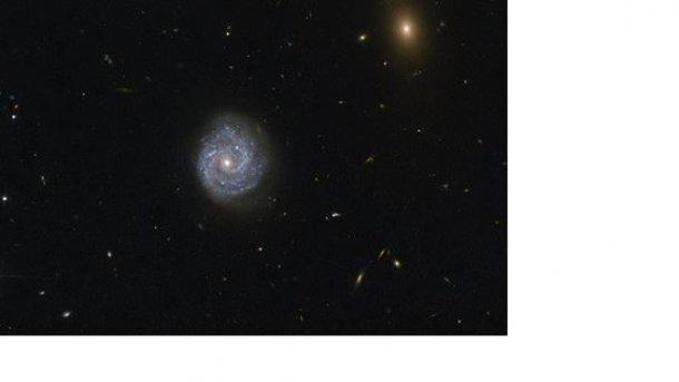 Ученые отыскали черную дыру всозвездии Девы