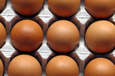 Украина теряет экспорт яиц
