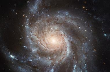 Астрономы нашли новый тип кольцеобразных галактик