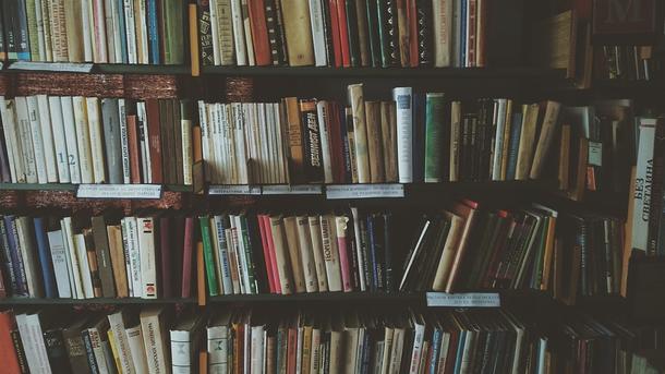 Житель америки вернул книгу вбиблиотеку спустя 100 лет
