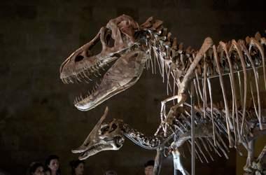 Naukowcy odkryli, co zabiło dinozaury