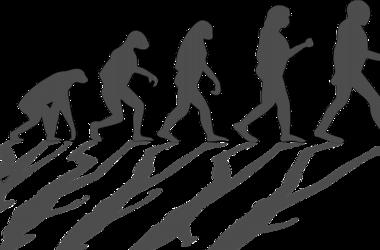 Ученые выяснили, какое хобби было у неандертальцев