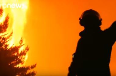 В Чили бушуют сильнейшие за последние десятилетия лесные пожары