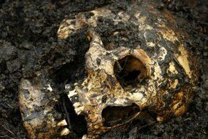 Возле Потемкинской лестницы в Одессе обнаружены останки человека