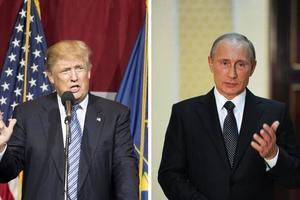 Песков рассказал, какое место займет Украина в предстоящих переговорах Трампа и Путина