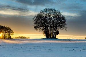В последнюю ночь января украинцам обещают мороз до -28