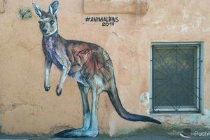 В центре Одессы нарисовали двухметрового кенгуру