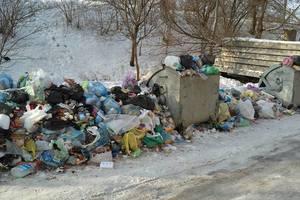 Ни полигон для ТБО, ни завод там строить  нельзя  - эксперт об участке, куда планируют свозить львовский мусор