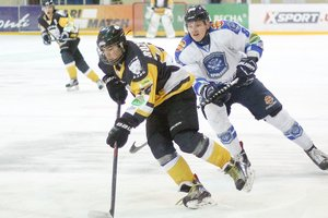 """Украинская хоккейная лига: """"Белый Барс"""" в овертайме проиграл """"Кривбассу"""""""