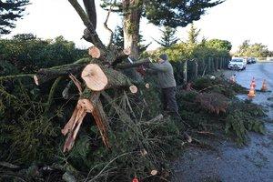 Разрушительный ураган пронесся по Франции