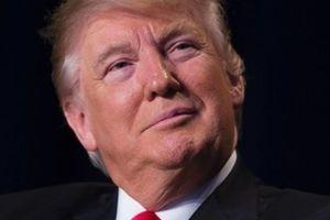 Трамп не уверен, сможет ли поладить с Путиным