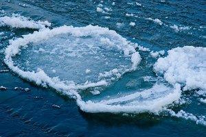 В Херсонской области мужчину на льдине унесло в свободное плаванье