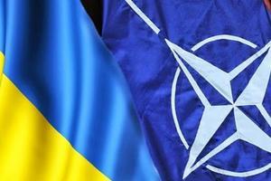 Парубий прокомментировал идею референдума о вступлении в НАТО